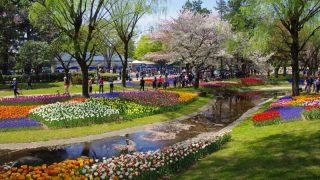 2018年昭和記念公園イベント最新情報!アクセス、駐車場情報のご案内